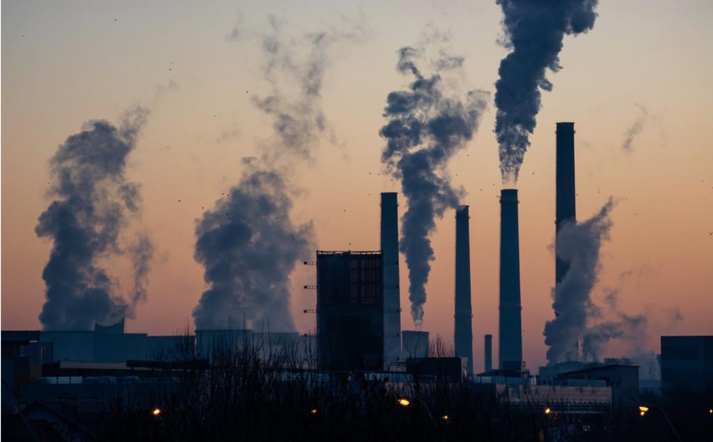 Ella Ivanescu pollution